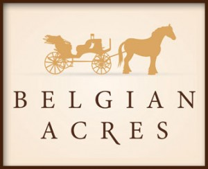Belgian Acres horse drawn Carriage-Vero Beach